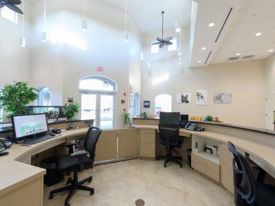 The reception area of Guardian Veterinary Medical Center. The lobby and reception area is very bright and clean
