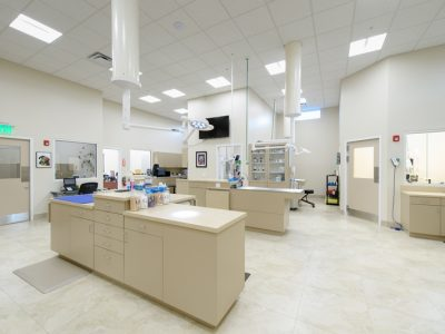 The treatment area of the hospital. The treatment area is very clean and orderly